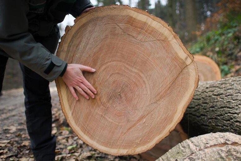 Sachsens Landesregierung lehnt trotz stark gestiegener Preise für Holz und andere Rohstoffe staatliche Eingriffe in den Markt ab.