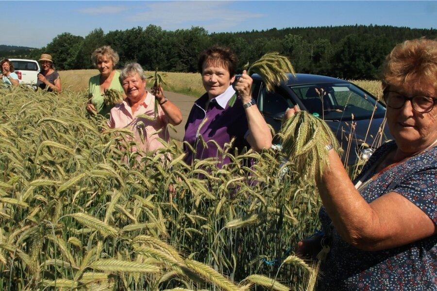 Gisela Dietel, Cornelia Hackel, Christa Winkler, Christina Purrucker, Christine Gruner und Gisela Müller (von links) waren beim Roggenschneiden dabei.