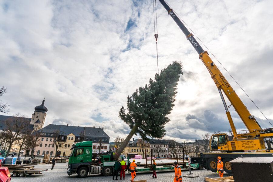 Der Weihnachtsbaum wird auf dem Marienberger Markt gesetzt.