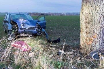 Der Ford war gegen einen Baum geprallt.