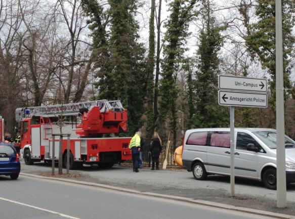 Am Dienstagvormittag ist aus einem Teich in Freiberg eine Frauenleiche geborgen worden.