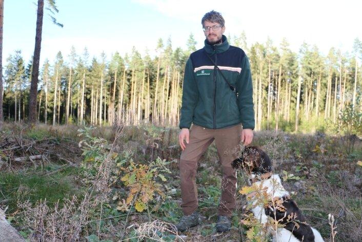 Revierleiter Eric Specht zeigt die Eichen, die im Gebiet Mittelhöhe voriges Jahr gepflanzt wurden.