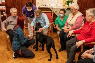 Ergotherapeutin Sofie Müller und ihr Labrador-Rüde Odin sorgen bei den Bewohnern der Tagespflege im Rochlitzer Heim für Abwechslung.