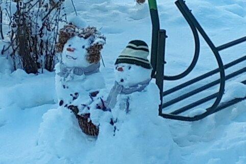 Schneekatze und ein warmes Iglu