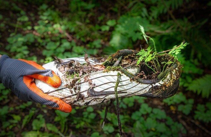 Ein Fußballschuh - einst sicher ein teures Exemplar - achtlos weggeworfen. Gut zu sehen, dass die Natur letztlich ihr Revier behauptet. Aber vielleicht hätte man mit dem gebrauchten Schuh auch eine Freude machen können.