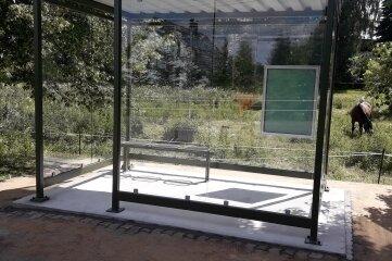 Das neue Buswartehäuschen an der Hauptstraße in Bockendorf. Es lässt keinen Fahrgast mehr im Regen stehen und ist zugleich ein Hingucker.