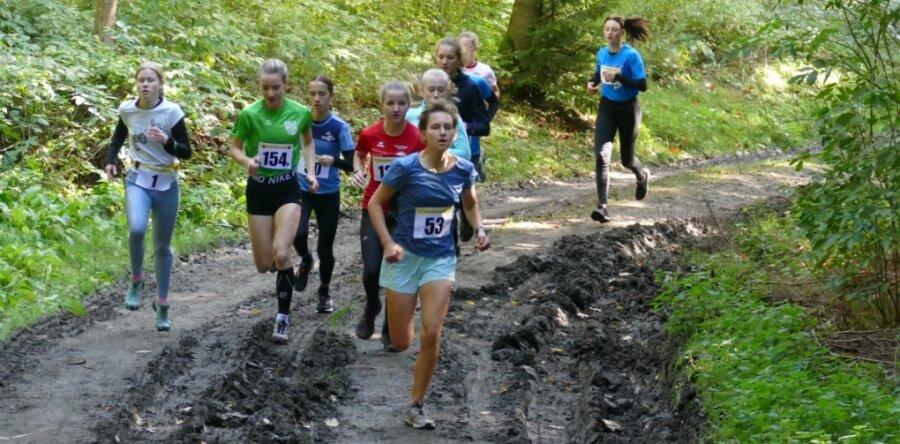 225 Crossläufer beweisen am Gelenauer Kegelsberg ihre Ausdauer