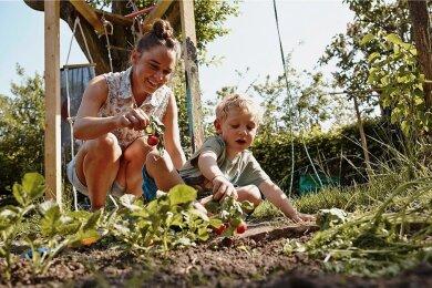 Die Union will Familien in mehrfacher Hinsicht fördern, beim Erwerb von Wohneigentum oder auch bei der Rente.