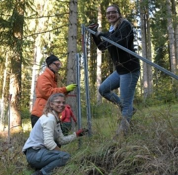 Angelika Nagler aus Nürnberg (hinten), Lynn Schröder aus Würzburg und Lea Festersen (rechts) aus Düsseldorf beim Abbau eines Zauns.
