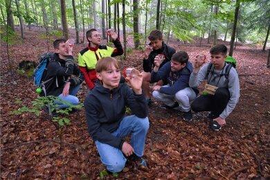 Angeleitet von Lehrling Neele Mothes (2.v.li.) suchten  die Schüler vom Kirchberger Gymnasium am Waldboden nach Lebewesen.
