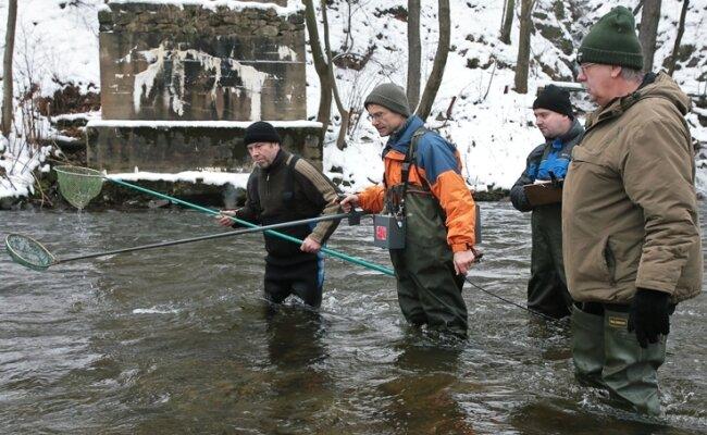 """<p class=""""artikelinhalt"""">Mit einer Probebefischung ermittelten die Angler damals, dass Schwarzwasser und Mulde auf zirka 30 Kilometern vergiftet waren. </p>"""