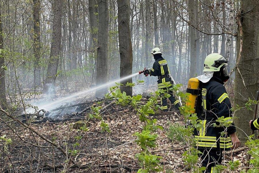 Die Feuerwehrleute waren in einem Waldstück an der Talstraße im Einsatz.