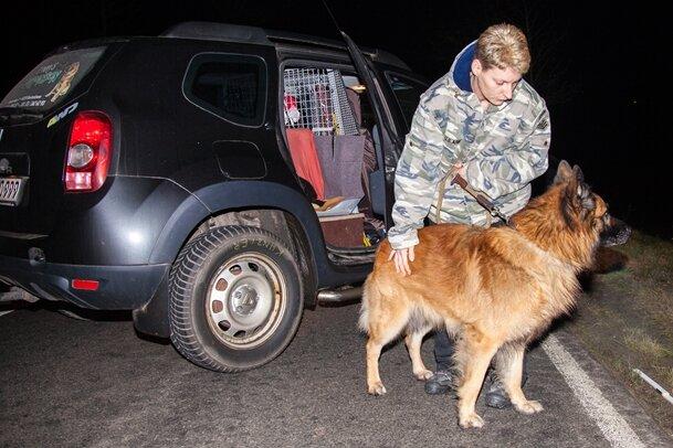 Der 61-jährige Passant war gestern Abend mit seinem Schäferhundmischling auf der B101 unterwegs, als er von einem Opel erfasst wurde. Der Mann starb noch an der Unfallstelle.