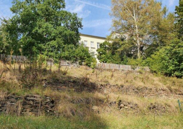 Der Falter entwickelt sich in den Ritzen der Trockenmauern des terrassenförmig angelegten Parks.