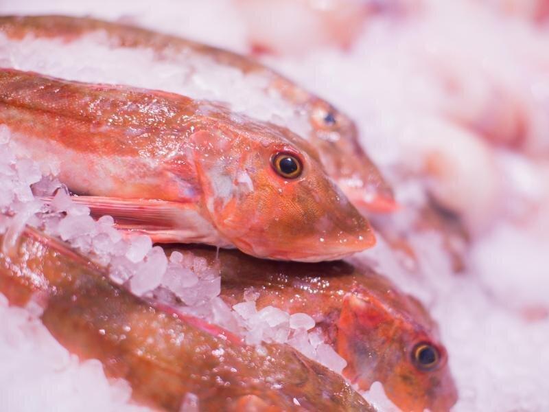 20,5 Kilogramm Fisch werden weltweit proKopf und Jahr verzehrt.
