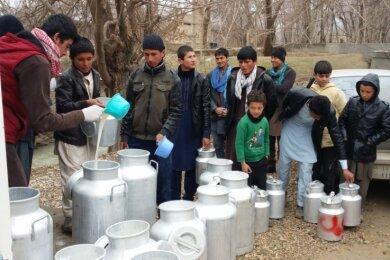 Afghanische Milchbauern bringen die mit eigenen Kühen erzeugte Milch zur Sammelstelle. Sauberkeit ist dabei oberstes Gebot.