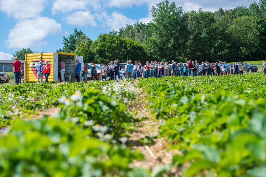 Da die Früchte auf dem Feld im Erzgebirge nicht so schnell nachreifen, wurde der Betrieb erst sehr spät eröffnet.