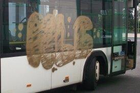 Ein Bus wurde in Frankenberg beschmiert.