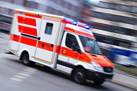 Aufgeregte Schäferhündin verhindert Erste-Hilfe-Versuch