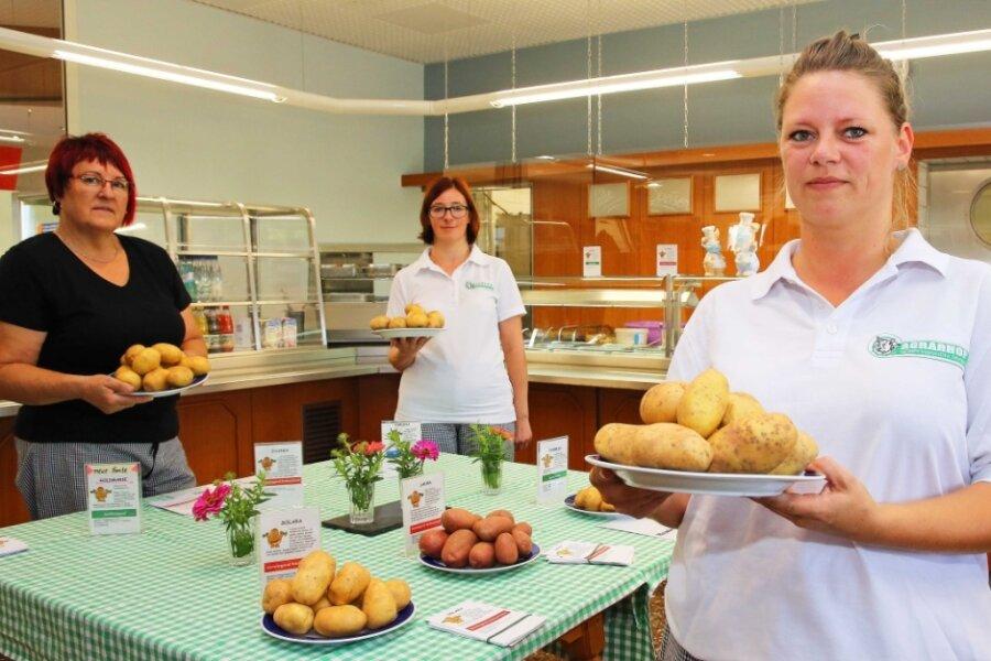Kartoffelernte in Gospersgrün: Sechs verschiedene Sorten können verkostet werden