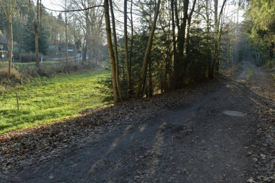Die ehemalige alte Bahnstrecke am Ortsausgang Mulda in Richtung Dorfchemnitz: Viele wünschen sich, dass die Trasse als Radverbindung hergerichtet wird.