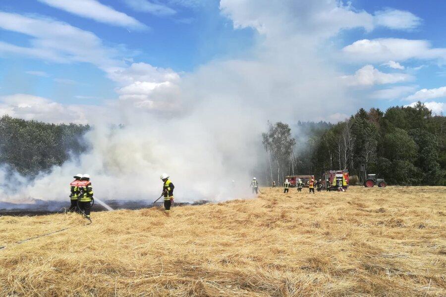 Getreidefeld steht in Flammen