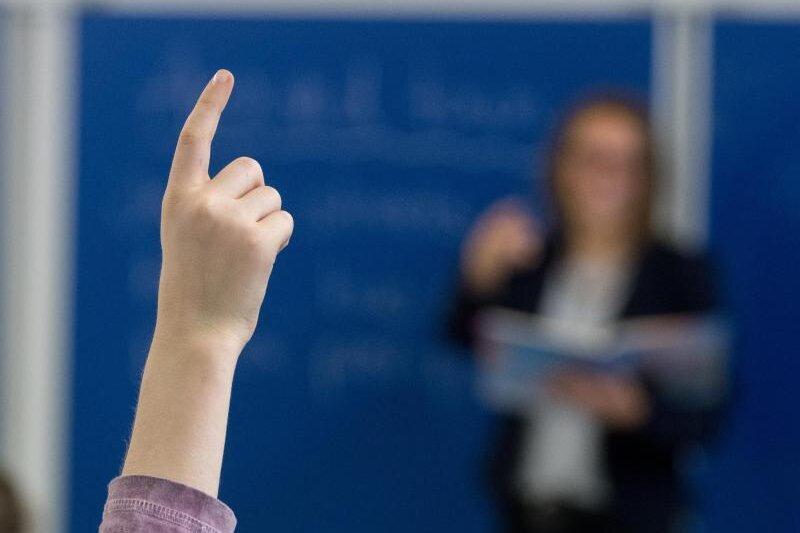 Gutachten: AfD-Lehrerportal zulässig