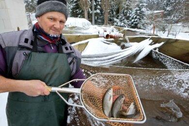 Jens Reers ist Fischzüchter in Lichtenstein. Bei ihm gibt es frischen Fisch direkt aus dem Wasser.