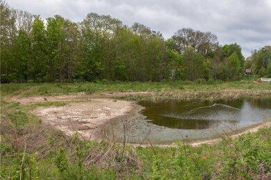 Selbst dieser niedrige Wasserstand wird nur durch permanentes Zupumpen aus der Göltzsch erreicht.