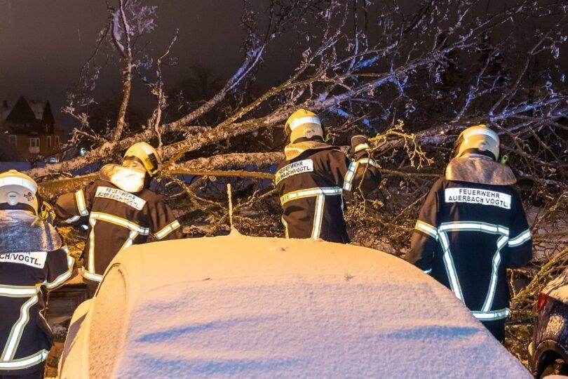 Baum fällt in Auerbach auf Autos - Mehrere Straßen gesperrt