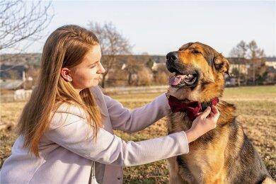 """Der Hund """"Rocco"""" vom Fotografen David Rötzschke musste für das Foto herhalten, Wiebke Knüpfer probiert das Halsband """"Fliege Gunilla"""" am Hund an."""