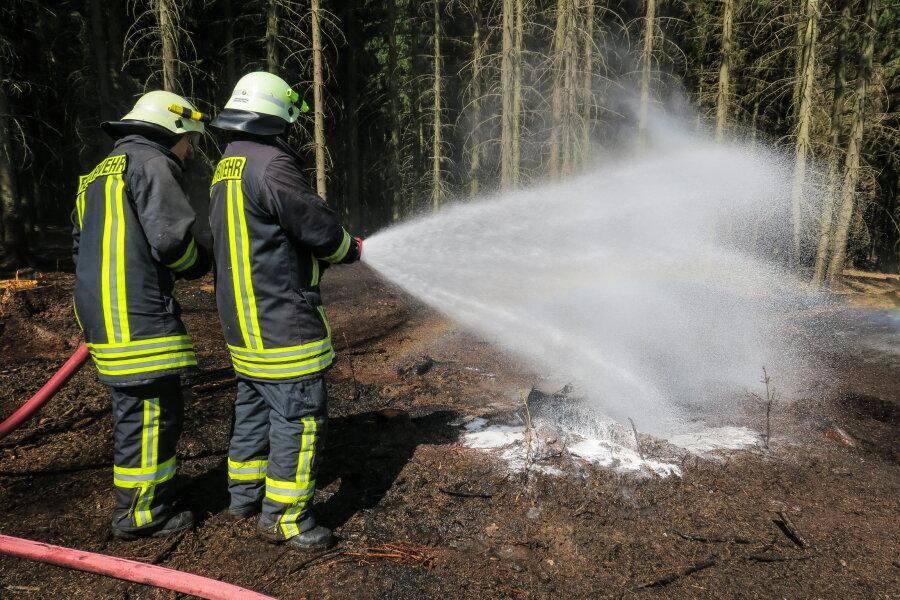 Waldbrand lässt Feuerwehr ausrücken