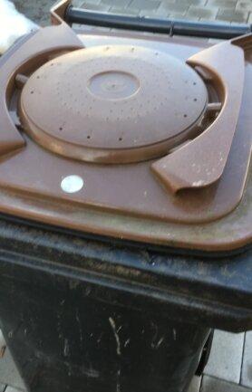 Eine Biotonne mit Biofilterdeckel. Der Filter soll alle zwei Jahre erneuert werden.