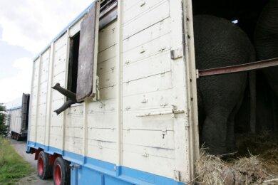 """<p class=""""artikelinhalt"""">Tiertransport mit Exoten: Stundenlang standen die Zirkus-Elefanten am Montag in ihren Wagen auf einem Feldweg gegenüber des Plauen-Parks. </p>"""