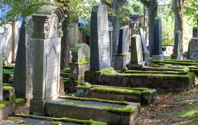 Der Jüdische Friedhof in Plauen ist ein Ort, dessen Moosteppich jedes Jahr grüner wird.