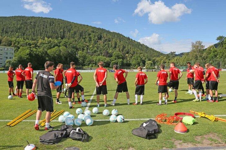 Der FSV Zwickau startet beim FSV Mainz II in den Profifußball.