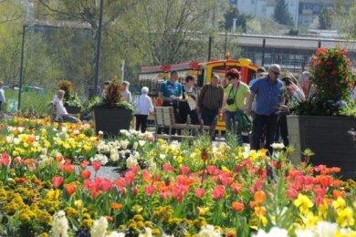 2019 fand die Landesgartenschau in Frankenberg statt. Aue-Bad Schlema bewirbt sich für die Schau in fünf Jahren.
