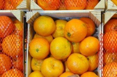 Nur selbstgeschält bieten Mandarinen ihren ursprünglichen Vitamingehalt.