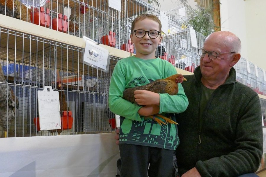 Wie der Vereinsvorsitzende Klaus Pröger (r.) präsentierte der neunjährige Jacob Lang seine Tiere auf der 51. Junggeflügelschau.