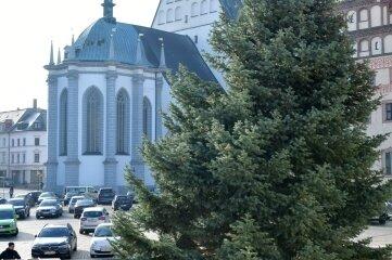 Über den Meißner Ring wurde der Weihnachtsbaum zum Untermarkt gebracht. Dort soll er ab 24. November erstrahlen.