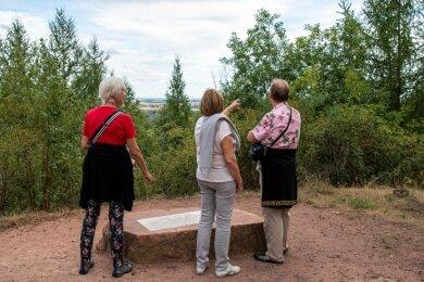 Am Rochlitzer Panoramablick lässt sich nur erahnen, was hinter den Lärchen zu sehen ist.