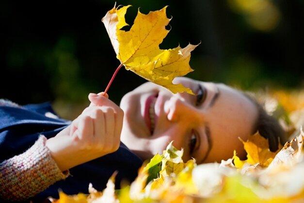 Im Oktober schon das Frühjahr vorbereiten - Aufgaben für Hobbygärtner