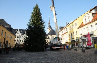 Jetzt ist er aufgestellt: Auf dem Zschopauer Neumarkt steht nun der Weihnachtsbaum.