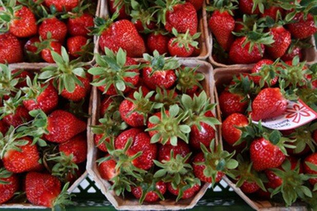 Erdbeere ist nicht gleich Erdbeere - Pflanztipps für den Garten