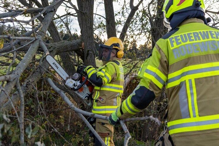 Die Feuerwehr Rodewisch absolvierte am Donnerstag sechs Einsätze, bei denen es Sturmschäden zu beseitigen galt. So wie auf dem Bild in der Ortslage Wiedenberg, wo Bäume eine Straße blockierten.
