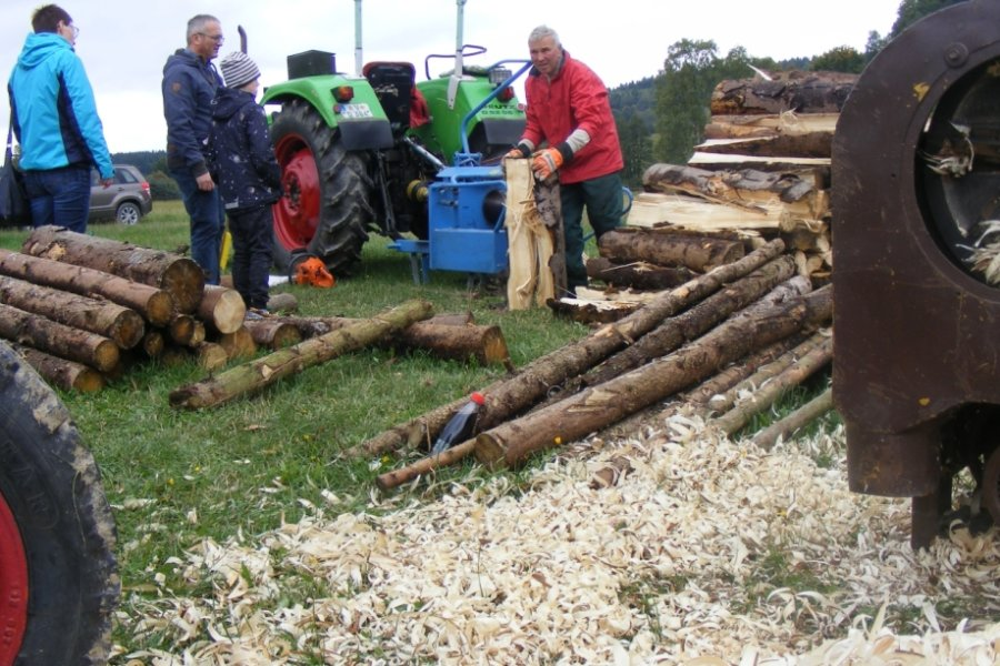 Im Museum Eubabrunn dreht sich am Sonntag alles ums Holz