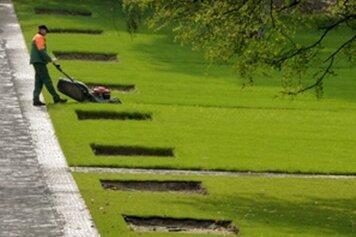 Großes Interesse an Bundesgartenschau: Zehntausende Karten verkauft
