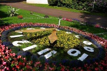Eine Kamera soll im Gellert-Museum gegenüber der Blumenuhr stehen.