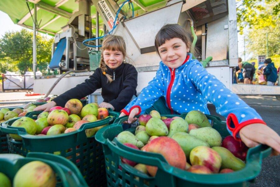 Äpfel für selbst gepresste Säfte