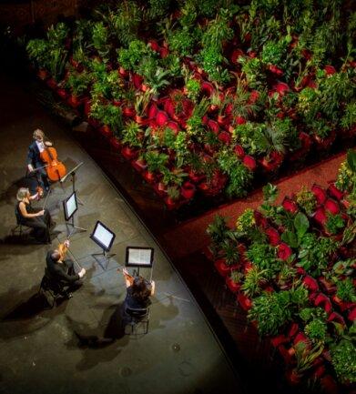 Pflanzen sind geduldige Zuhörer, aber eigentlich lässt Musik sie kalt. So war es kein Akt artgerechter Haltung, als Musiker im Gran Teatre del Liceu Barcelona im Juni 2020 zum vorläufigen Ende der Corona-Krise vor einem Auditorium spielten, das auf allen 2292 Sitzplätzen mit Pflanzen besetzt war. Menschen waren nur online als Publikum erlaubt.